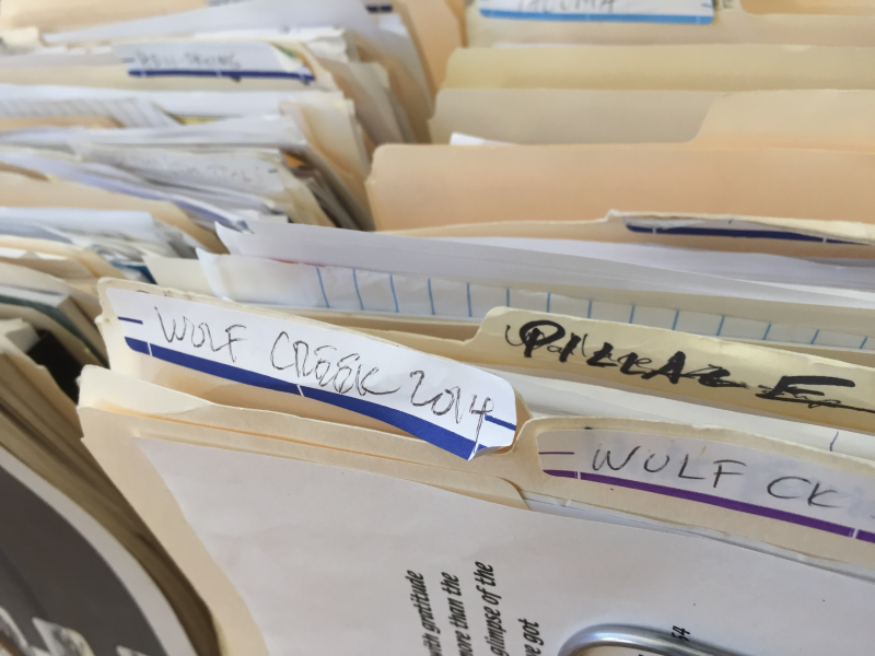 Wolf Creek Files