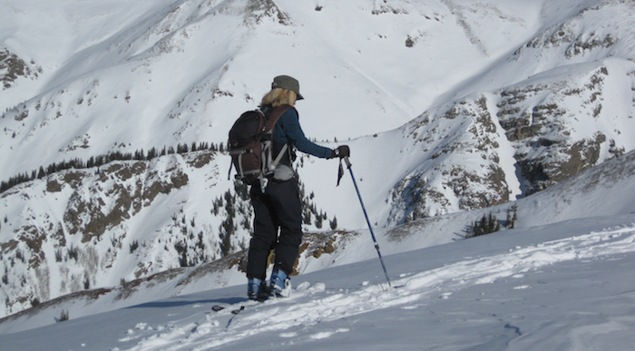Picture of backcountry skier