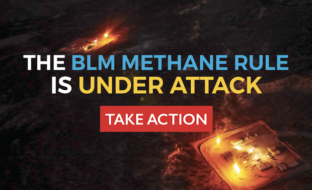 BLM Delay Action Banner