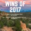 Wins of 2017!