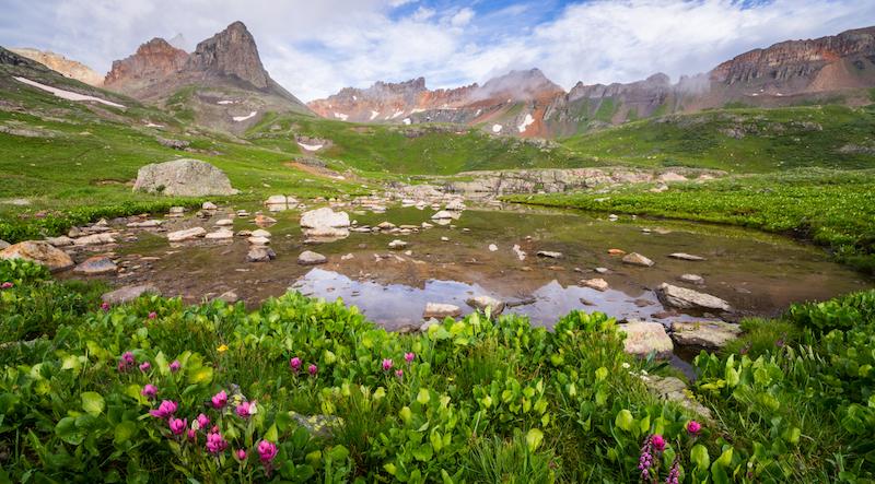 Photo of wildflowers in Ice Lake Basin by Jason Hatfield