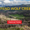 Forest Service Tries to Circumvent Court Ruling to Green Light Controversial Village at Wolf Creek
