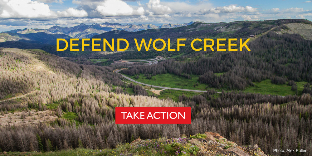 Defend Wolf Creek Take Action Banner