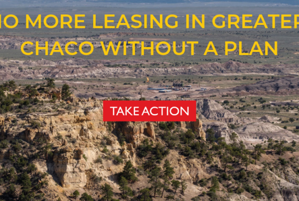 take action greater chaco