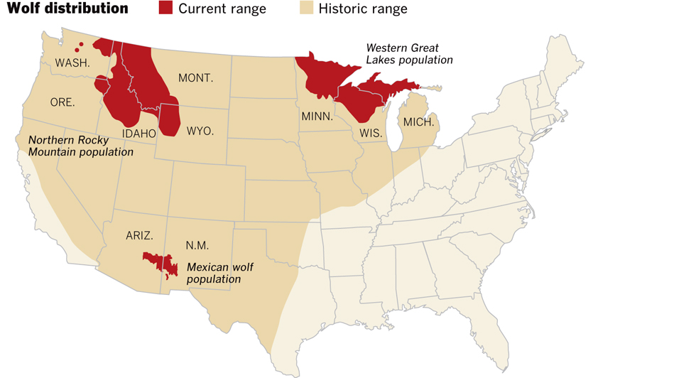 historical and current wolf range
