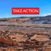 Take Action to Defend Chaco – Ask BLM to Act Humanely